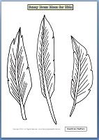 cowboys and indians feathers
